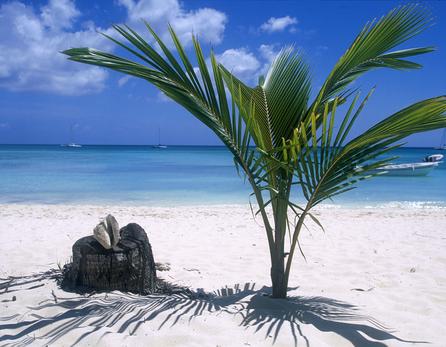 Остров был открыт христофором